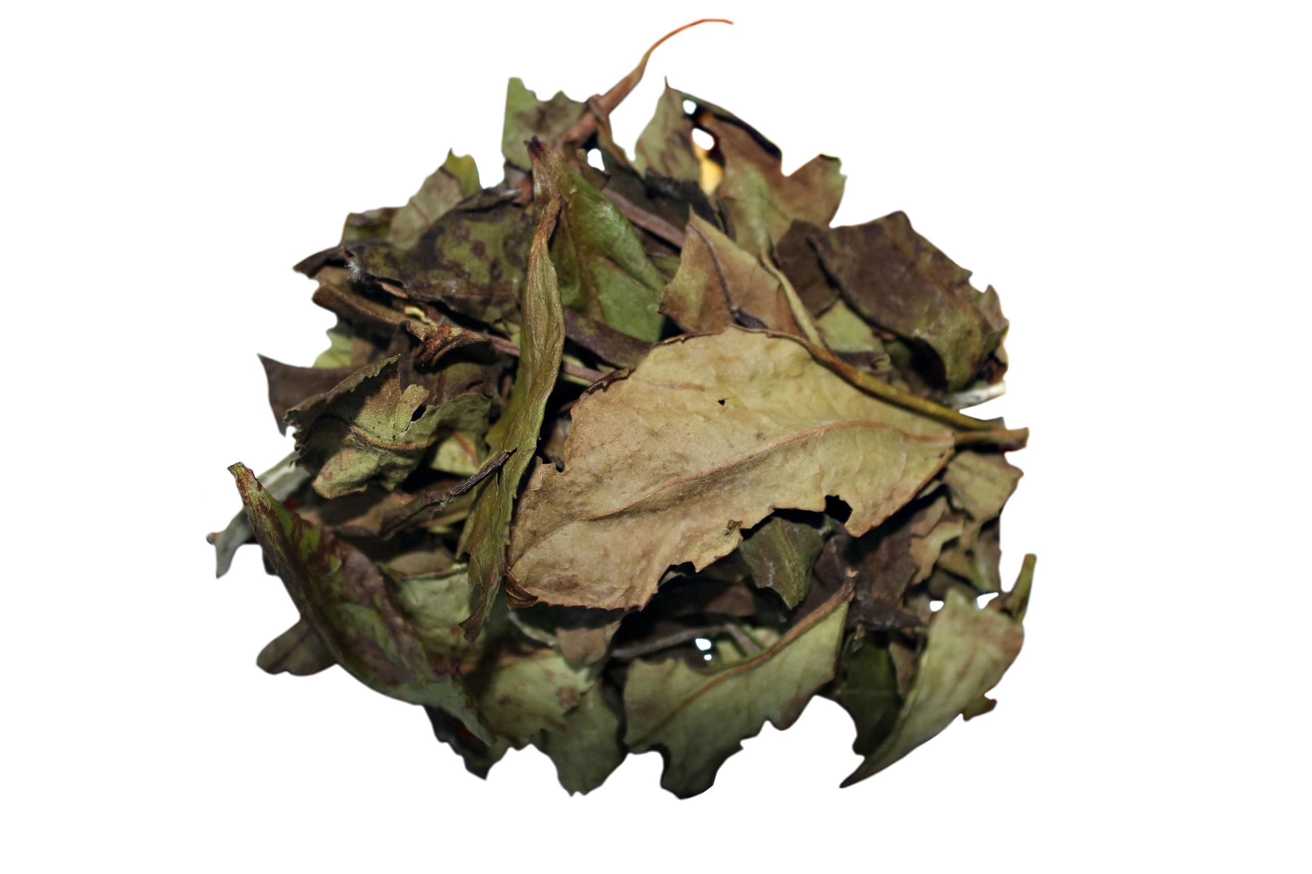 Белый чай Е Шэн Бай Ча